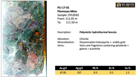 PLI-17-01 Polymictic Hydrothermal Breccia
