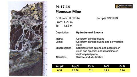 PLI17-14 Hydrothermal Breccia