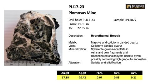 PLI17-23 Hydrothermal Breccia