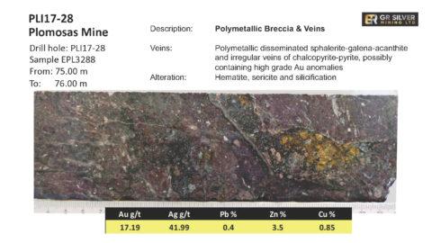 PLI17-28 Polymetallic Breccia & Veins