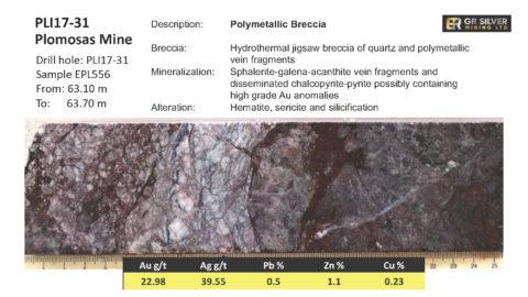 PLI17-31 - Polymetallic Breccia