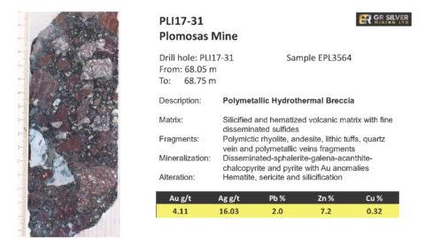 PLI17-31 - Polymetallic Hydrothermal Breccia